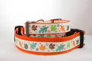 Fall dog collar