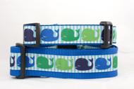 Blue whale dog collar