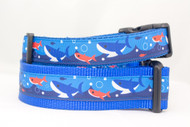 Shark dog collar