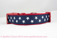 "1"" wide patriotic dog collar"
