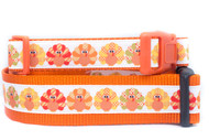 Turkey dog collaR