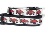 Country dog collar
