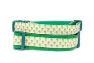 Tropical dog collar