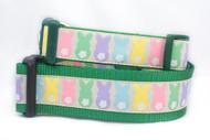Bunny dog collar
