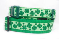 Shamrock dog collar