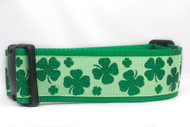 Large dog collar for St Patricks day