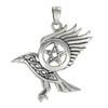 Raven Pentacle Necklace