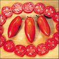 Opalka Heirloom Tomato