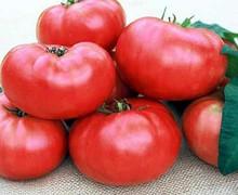 mariannas peace heirloom tomato seed. Black Bedroom Furniture Sets. Home Design Ideas