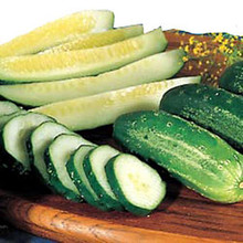 Cucumber Homemade Pickle