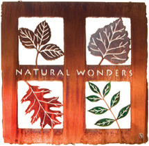 """Natural Wonders"" Lazart Metal Wall Art"