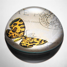 Art Glass Orange & Brown Butterfly Paperweight