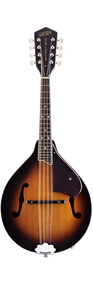 Gretsch G9320 New Yorker Deluxe Acoustic/Electric Mandolin