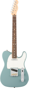 Fender American Professional Telecaster Sonic Gray with Case