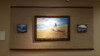 Displayed at Henry Ford Hospital  Healing Arts Collection - West Bloomfield, Michigan