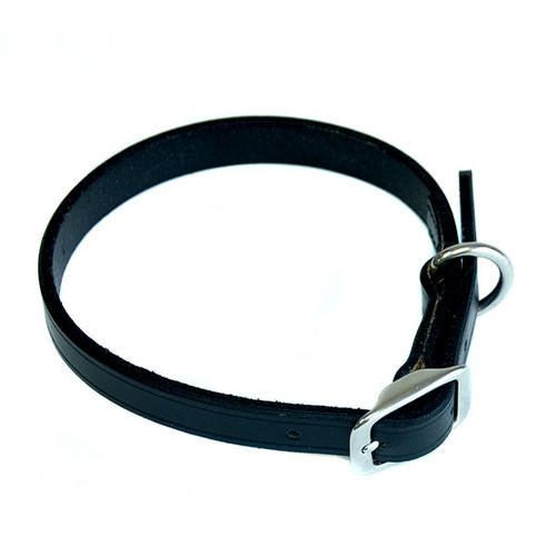 Leather Dog Collar (Small) by Paramount Saddlery