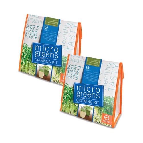 Micro Greens Radish / Broccoli / Mustard (Set Of 2) by Seracon Eco-Culture