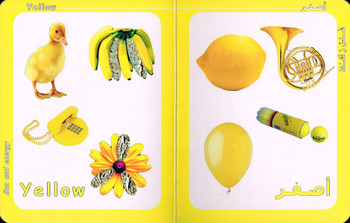 Big Ideas for Little Minds Colors