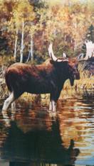 Garden Flag ~ Moose