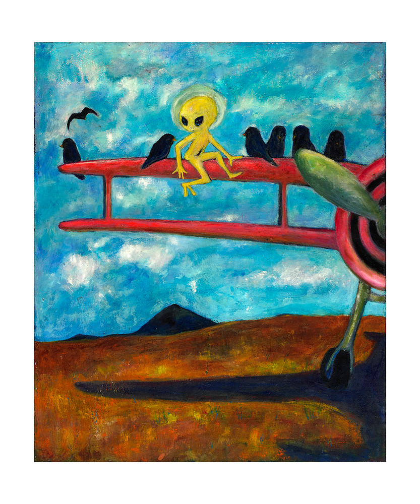 Alien On A Biplane by Colette Miller