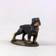 60015 - Rottweiler