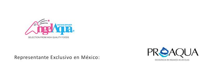 angel-aqua-proaqua-mexico-acuicultura-aquaculture.png