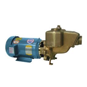 Bomba centrífuga industrial Q-Pumps serie R
