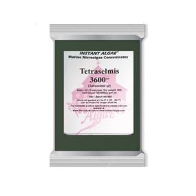 Concentrado de microalga Instant Algae Tetraselmis 3600
