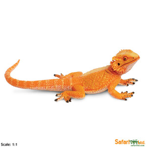 Bearded Dragon Replica - Incredible Creatures Collection