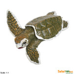 Kemp's Ridley Sea Turtle Baby Replica