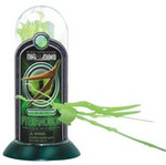 Glow in the Dark Test Tube Dino Snap Toy 30133