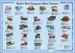 American Educational - World's Most Dangerous Water Creatures Poster - Laminated