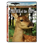 Ark Media - Nature: Prince Of The Alps - DVD