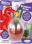 Dragon Tree Mini Terrarium for Kids MT-D135