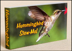 Fliptomania - Hummingbird Slow-Mo