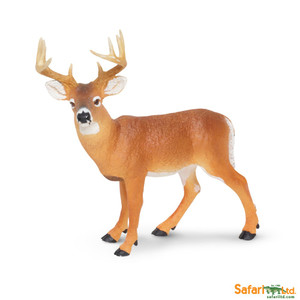 Safari - Whitetail Buck Replica
