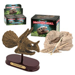 GeoCentral - Dino Skull Excavation Kit