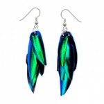 Real Beetle Wing Earrings