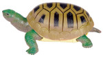 Turtle Squishimals Toy - Stretchy, Squishy Turtle
