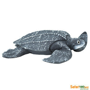 Leatherback Sea Turtle Replica 202429