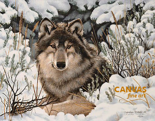 Charles Frace 'Undercover' Wolf Canvas Signed & Numbered L/E