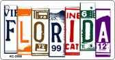 Florida License Plate Art Metal Novelty Mini License Plate Key Chain
