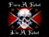 Born A Rebel Metal Novelty Parking Sign