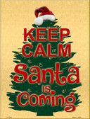 Keep Calm Santa Is Coming Metal Novelty Parking Sign