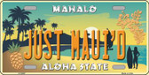 Just Mauid Vintage Background Novelty Metal License Plate