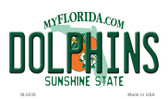 Dolphins Florida State Background Novelty Novelty Metal Key Chain