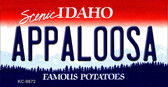 Appaloosa Idaho State Background Metal Novelty Key Chain