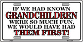 Grandchildren First Metal Novelty License Plate LP-272