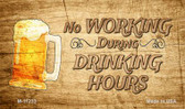 No Working During Drinking Hours Novelty Magnet