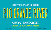 Rio Grand River New Mexico Novelty Magnet